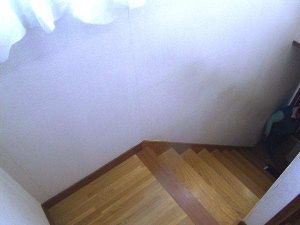 ご高齢には大変な階段