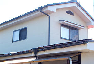 kiji0524_018.jpg