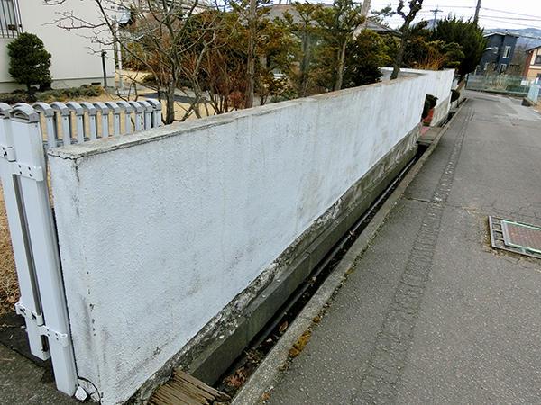 kiji_nakamura.jpg